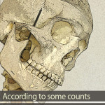 How many bones are there in the human skull?