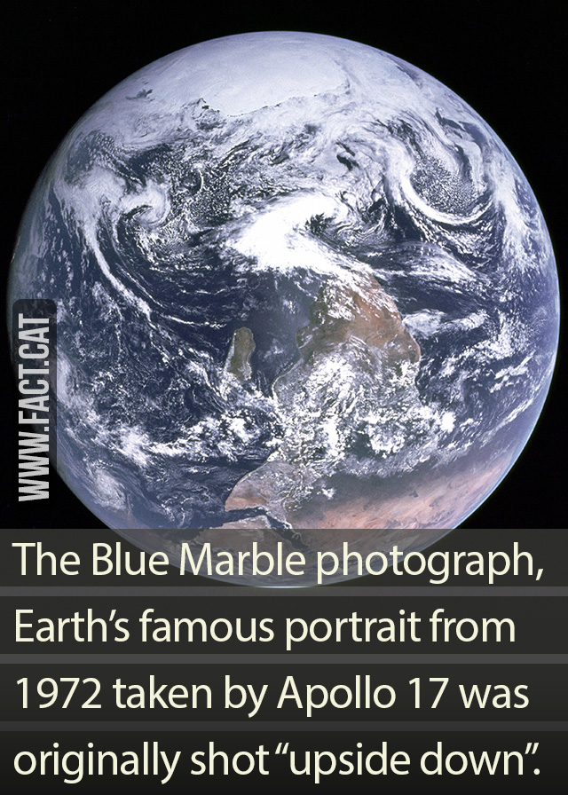 187 An Upside Down Portrait Of Earth