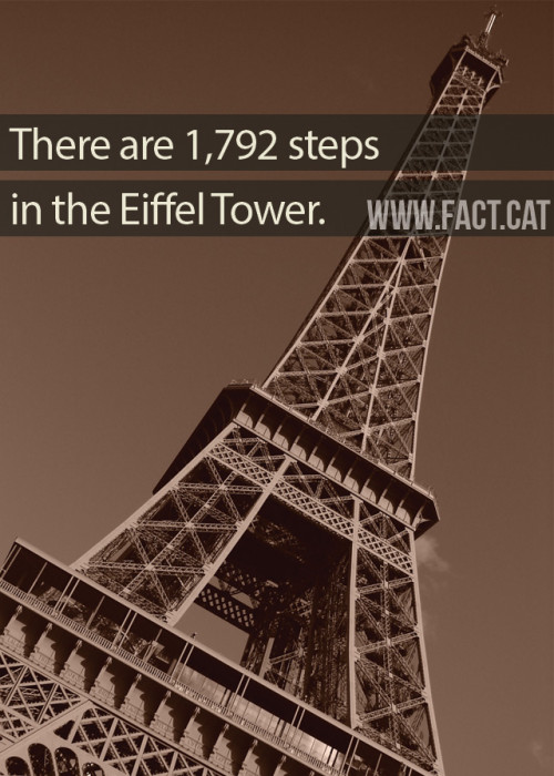 Steps To Eiffel Tower Top : How many steps are in the eiffel tower