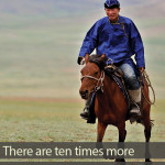 How many horses are there in Mongolia?