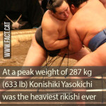 Who was the heaviest rikishi ever in sumo?