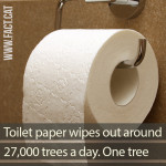 How many trees are used to make toilet paper?