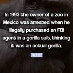 FBI gorilla