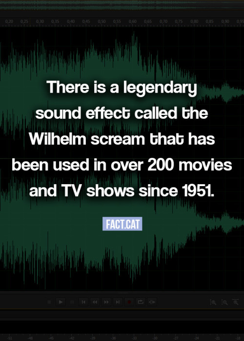 What is the Wilhelm scream?